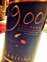 Barbera d'Asti Superiore Nizza Neuvsent 2001 Cascina Garitina